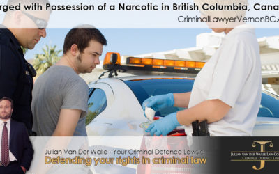 Charged with Possession of a Narcotic in British Columbia, Canada? Understand What It Means